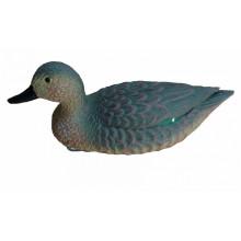 Чучело BIRDLAND 7355 чирок плавающий (утка)