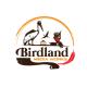 Birdland (Китай)